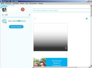 Поиск абонентов в скайп